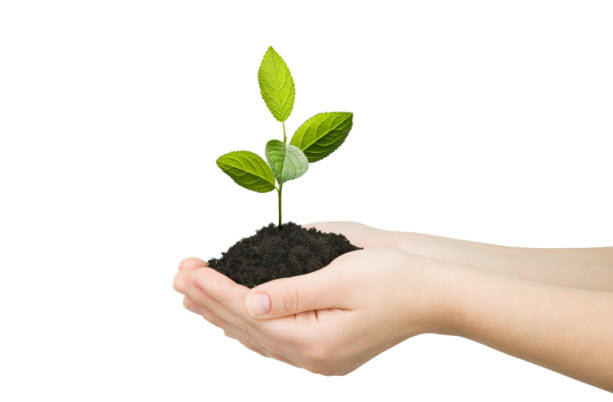 Grow Organically